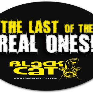 Autocollant 14,5cm Black Cat